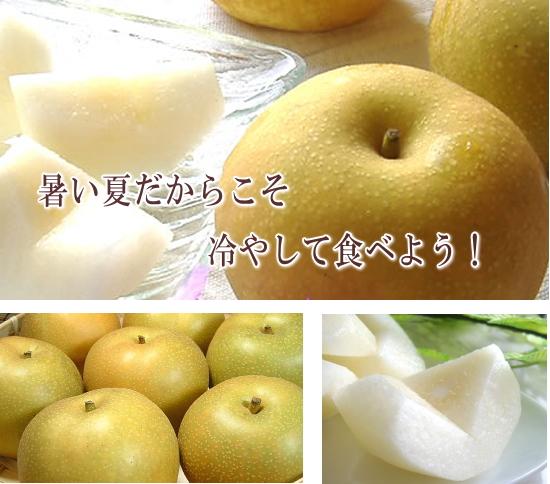 「幸水梨」暑い夏だからこそ冷やして食べよう!