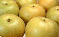 豊水梨の写真