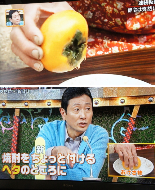 「秘密のケンミンSHOW」で「おけさ柿」を焼酎にさわす当園母ちゃん