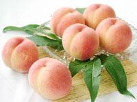 白鳳桃の販売の写真