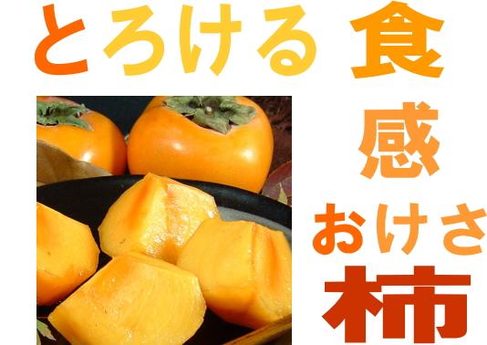 とろける食感 おけさ柿の販売、通販