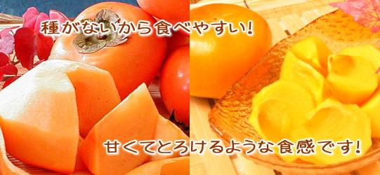 特選「おけさ柿」栄養たっぷり